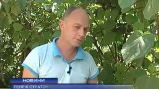 Житель Ужгорода вывел сорт