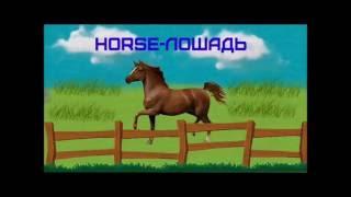 английский для детей: Учим животных на ферме, на английском