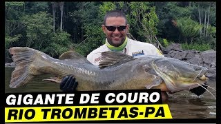 Programa Pura Pesca, Gigantes de Couro, rio Trombetas, PA.