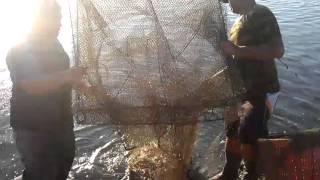 晨曦下的拉蝦網