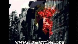 Dismantled - The War Inside Me