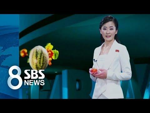 北 방송, 가상 현실에 고화질 HD까지? / SBS