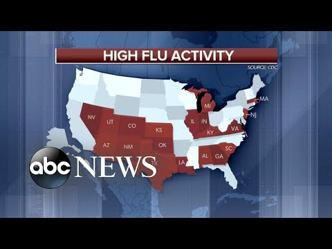 CDC reports 20 states experiencing high flu activity