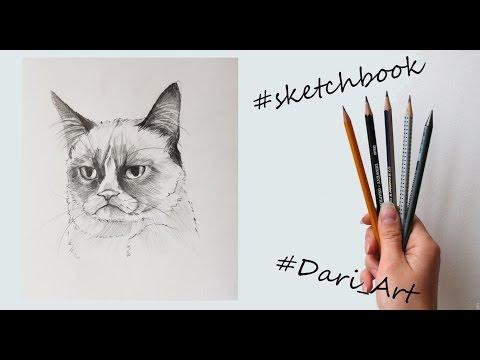 Как нарисовать кота КОТИКИ