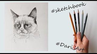 Рисуем скетчи! Угрюмый кот простым карандашом! #Dari_Art(Свои идеи к видео урокам оставляйте в группе ВК https://vk.com/dari_art_artist Для работы нам потребуется: бумага (у меня..., 2015-11-09T15:16:17.000Z)
