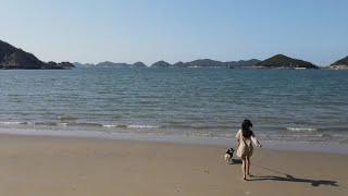 강아지 노지 캠핑 영상 | 드론뷰 | 갬성 캠핑 | 웰…