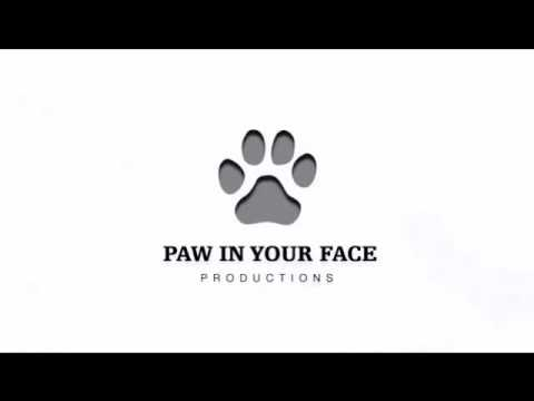 Panda Productions / Paw In Your Face Productions / CBS Productions
