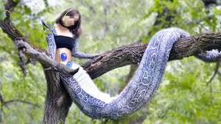 15 Mythical Creatures That Exist In the Wild