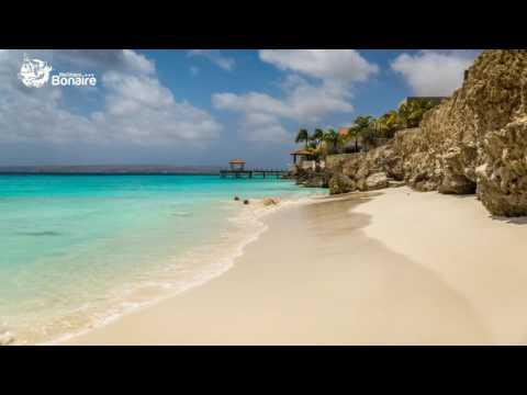 Bonaire island Tour