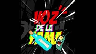 SALUDOS de PLANKTON (Luis Miguel Pérez) al canal reinik Volta!!