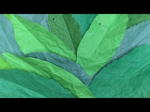 How to make simple & easy paper leaf - arts & crafts