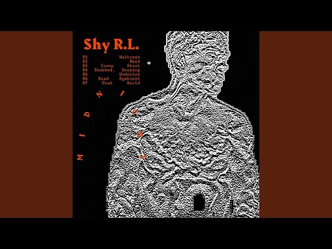 Shy R.L. - Waitress
