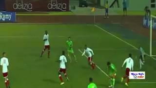 الجزائر إلى نهائيات كأس أمم إفريقيا 2017- فيديو
