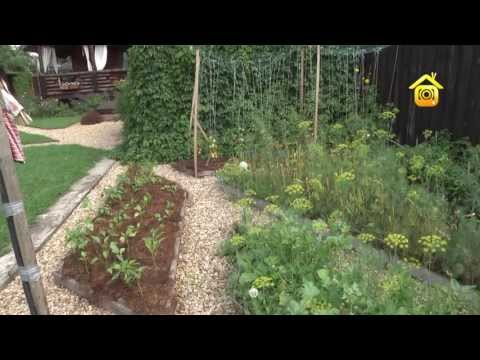 видео: Огород без хлопот // forumhouse