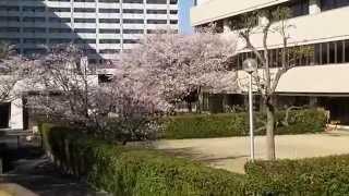 堺市立南図書館        2014 03 31 08 42 28