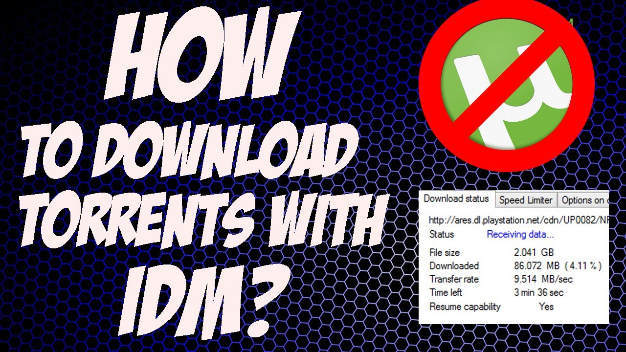 How To Download Torrent With Idm At Full Speed Working 2017