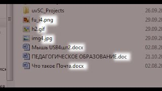 Расширение имени файла и как его изменить. Windows XP, Vista, 7, 8