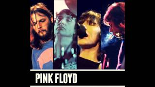 Pink Floyd - 05 - Pigs (Three Different Ones) [Live HD SUP+]