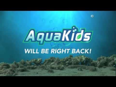 Aqua Kids 2015-18 Ocean Acidification and Lobsters
