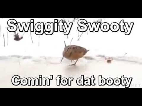 Swiggity Swooty Youtube Swiggity swooty, i'm coming to terminate that booty (v.redd.it). swiggity swooty youtube