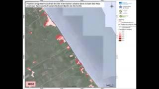 Artificialisation progressive du littoral en baie des Veys de 1947 à nos jours - Zoom 1