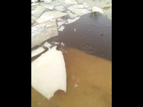 Рыбалка в Егорьевске(2)