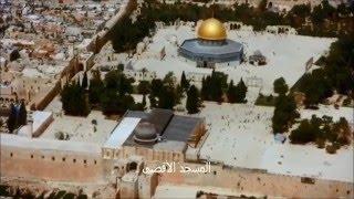 فلسطين من الجو .... موطني