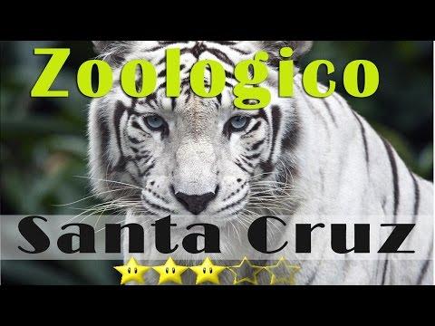 Viaje Recorrido Al Zoologico Santa Cruz y Salto Del tequendama Colombia Zoo TravelTips