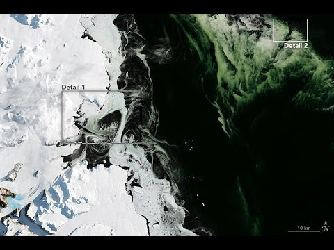 Antarctica Is Turning Green!.. Is it Aliens, climate change, or just NASA??