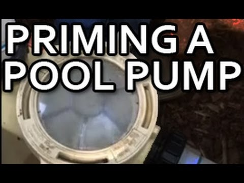 Priming A Pool Pump Youtube