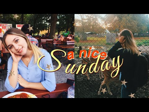 🕊 Η τέλεια Κυριακή 🕊 (Vlog)