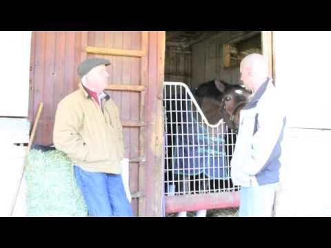 Cur-OST Interview with TB Trainer Glenn Thompson