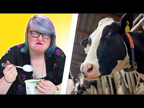 Vegans Try Dairy For The First Time