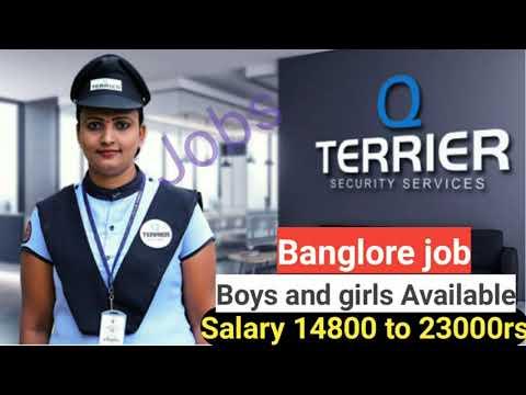 Banglore Security Guard Job // Security Service Banglore || बेंगलुरु में जॉब कैसे पाए|