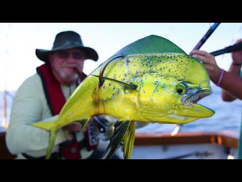 Offshore Fishing And Deep Dropping From Virginia Beach With Underdog Charters