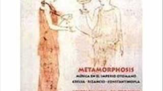 METAMORPHOSIS-TA TYPICA