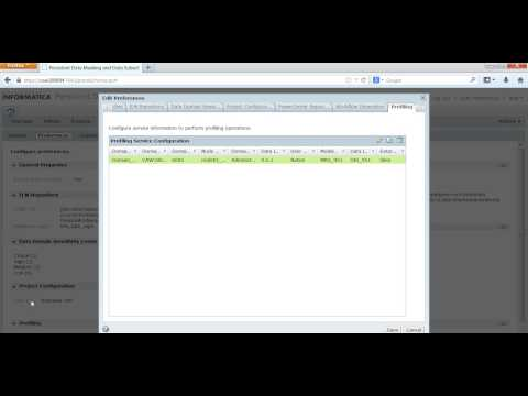 Data domain profiling in TDM 9.5.x