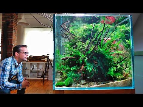 Nature Aquarium Aquascape Therapy (Relaxing Cinematic Edition)