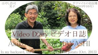 0335 Video Diary ビデオ日誌 人間=猿ヶ島のサル論 Humans as Apes in ...
