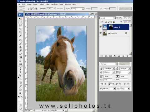 photo restoration photoshop tutorial