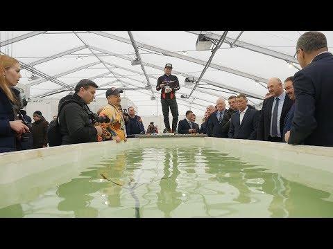 В Казани открылась специализированная выставка «Рыболов. Охотник»
