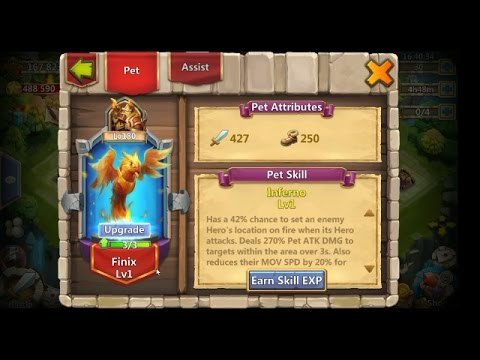 HOW TO UPGRADE PETS???- CASTLE CLASH