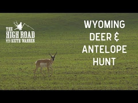 Deer & Antelope Hunting Wyoming | The High Road with Keith W