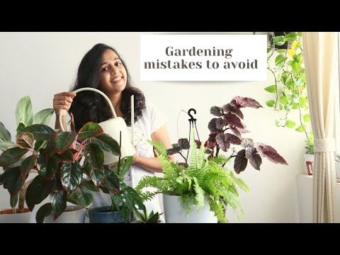 5 Gardening Mistakes must to Avoid | Indoor Plant Care for Beginners