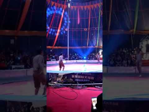Focus Acrobatics Entertainment -China performances