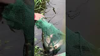 рыбалка хорошийулов рыбалка2021 рыбалканаспининг