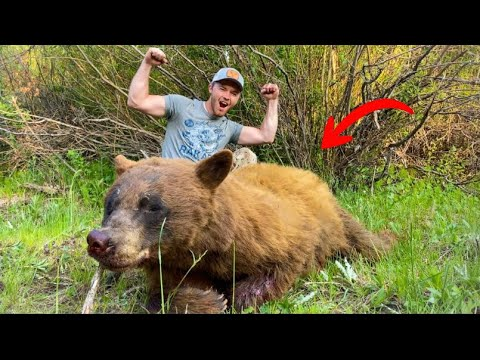 Hunting GIANT BEARS in Remote Mountain Ranges!!! (Up close & PERSONAL!!!)