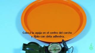 Brújula casera. Experimentos (Divertiaula). How to make a homemade compass.