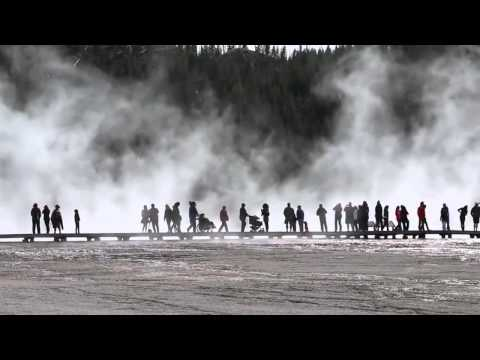Yellowstone National Park Footage  CC Free   stabilized