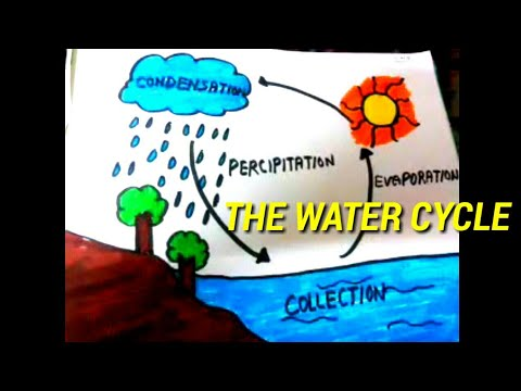 HOWTO DRAW WATER CYCLESTEP BY STEP - YouTube
